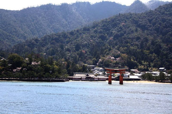 Miyajima et le torii flottant