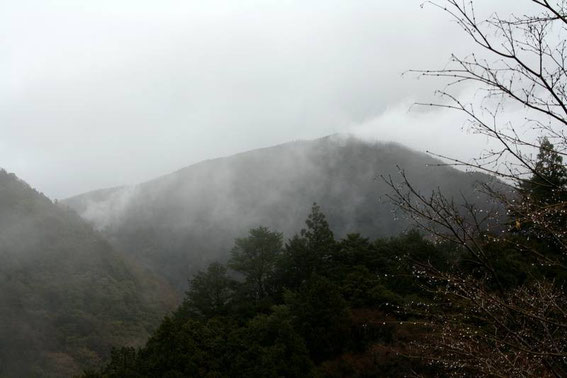 Au-dessus de Sumatakyo