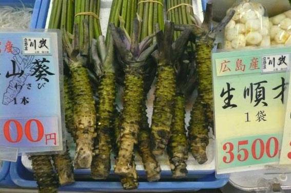 Wasabi frais