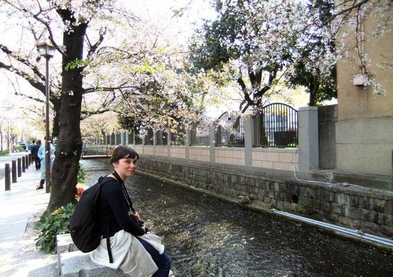 Canal Takasegawa (construit par Suminokura Ryoi (1554-1614)