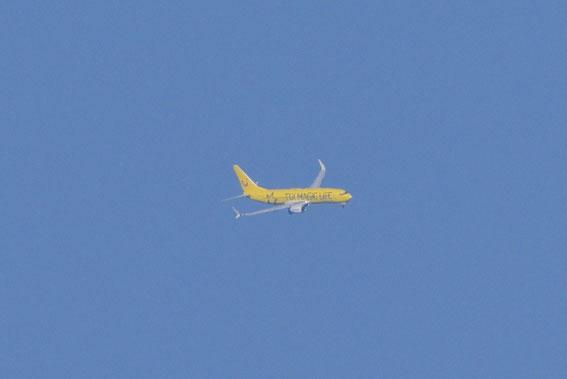 Inbound from VIE, 30.08.16 X 3 17.55 h