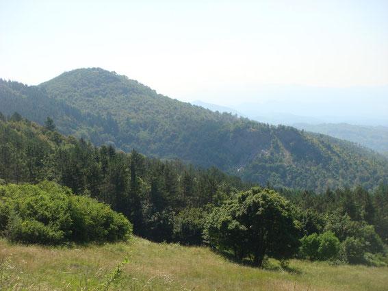Monte Altuzzo seen from Monticelli Ridge