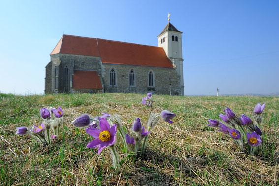 Kirche Wartberg