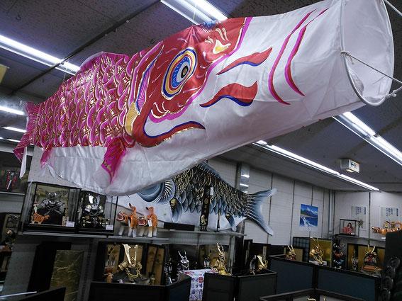 店の中を3Mの緋鯉が泳いでいます。