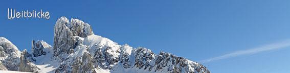 ANN42 - Bischofsmütze im Winter