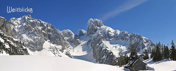 ANN41 - Bischofsmütze im Winter
