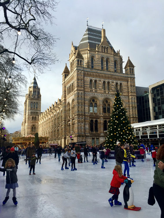 Ice Rink am Natural History Museum