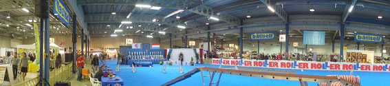 88th International Dogshow Luxembourg