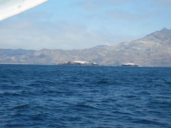 Gull Island, South side, Santa Cruz Island...  anchorage was too rough in that area, so on around westward...