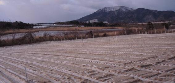 畑に雪うっすらと。上潟(うわかた)展望