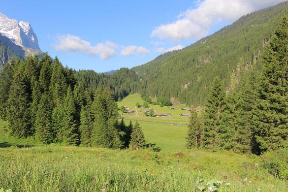 Grindel Alp im Reichenbachtal (Rosenlaui)
