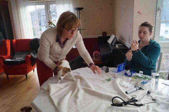 Frau Dr. Henrichs mit ihrer Assistentin bei der Arbeit - hier mit Dilara