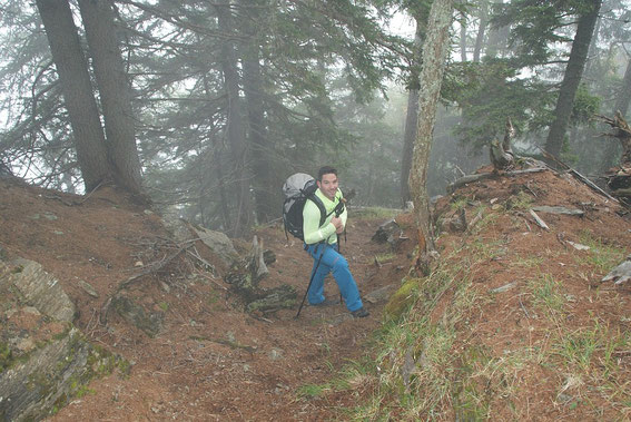 Noch im Nebel beim Aufsteig am Gugganigriegel