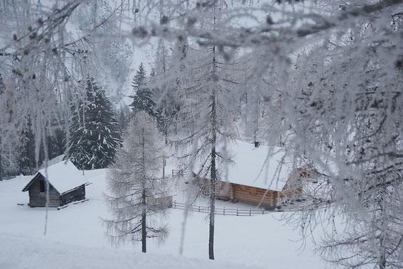 Die Ogrisalm mit der mittlerweile abgebrannten Hütte