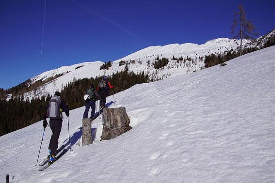 Aufstieg im freien Gelände (wir haben die Waldvariante gewählt)