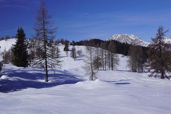 Hochwarter Höhe (links) mit Hochwarter Alm (rechts), im Hingergrund der Reißkofel