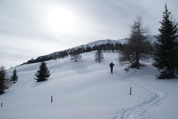 Aufstieg im oberen Almbereich, der Gipfel kommt rechts ins Bild