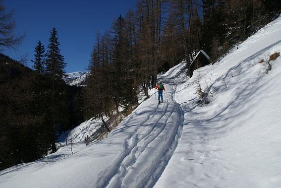Am Almweg zur Wansinghütte