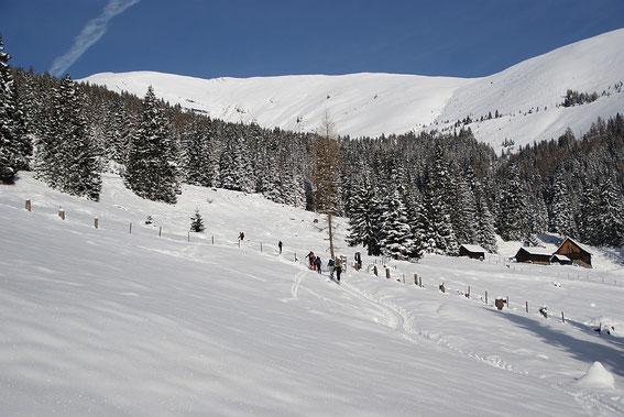 Die ersten Almwiesen sind erreicht, im Hintergrund links zeigt sich schon der Gipfel