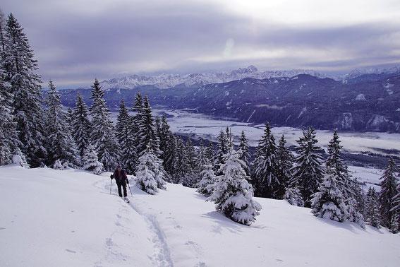 Knapp vor der Einmündung des Sommerwegs auf den Forstweg in 1660m Höhe, im Hintergrund das Gailtal mit den Juliern