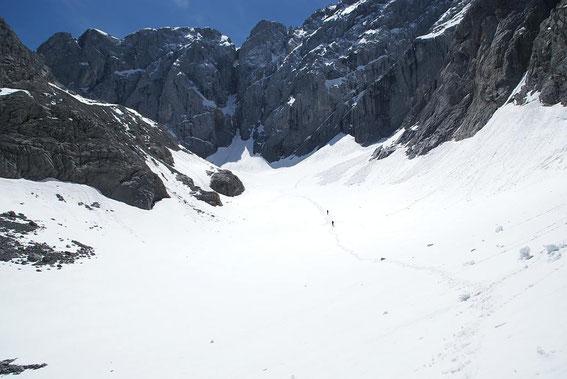 Der Trog der Gletscherzunge mit dem höchsten Punkt des Gletschers und mit der umrahmenden Kellerwand