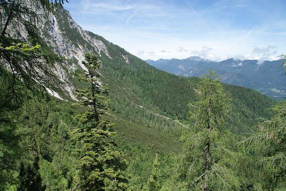 Der weite Weg zurück, der Waldrücken rechst der Bildmitte muss noch überschritten werden