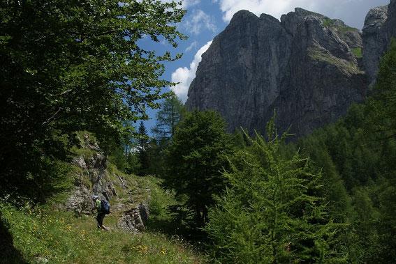 Aufstieg Richtung Casera Palgrande di sopra, rechts wieder der markante Piz Timau
