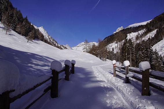Aufstieg via Kohlmaierhütte, knapp unter besagter Hütte