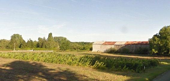 Un arpent de vigne paysanne arraché début 2017 à 10 kms d'Orléans (photo google streetview)