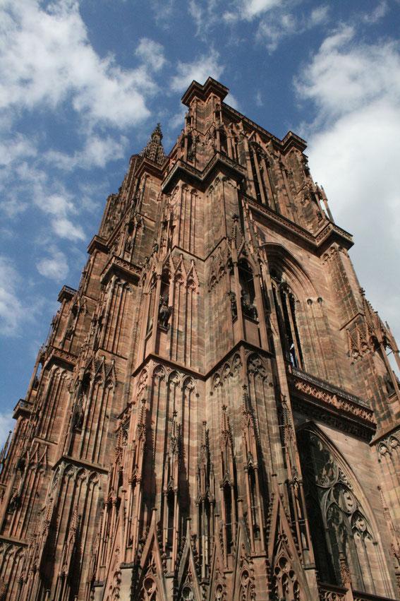 Straßburger Münster - Seitenansicht