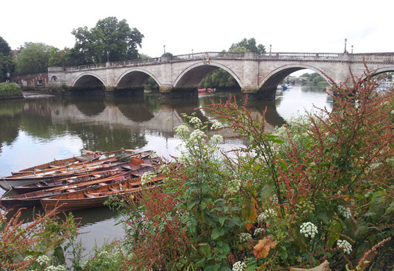 Thames with boats