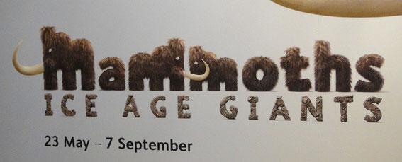 Mammoths Title