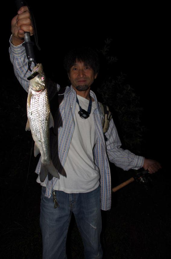 数日前、釣動画職人の「ネコビジョン」さんと河原へ肩の体操に。増水で激流と化した流れで、プラグを喰ってきてくれたニゴイ。よー引きました(釣ったのは、私)。ネコビジョンのお目々が、本当にネコみたい!