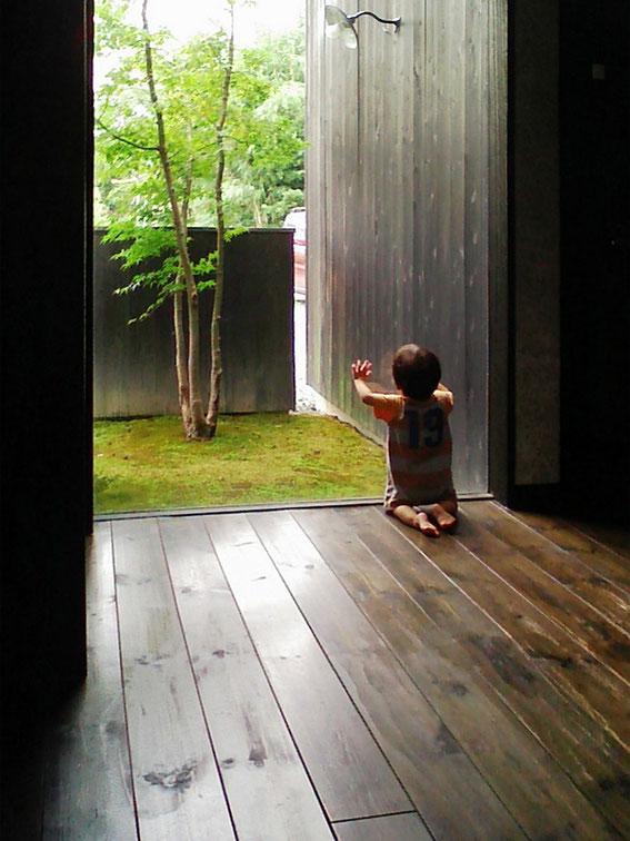 ディクタ建築事務所(愛知県豊川市)玄関ホールから中庭の眺め