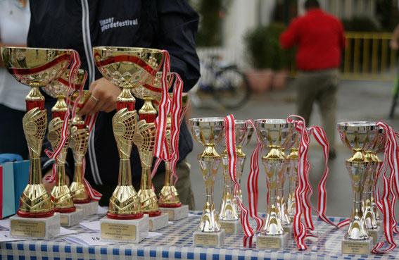 Das Linzer Pferdefestival ist bereit für das CSIO**** Linz © Linzer Pferdefestival