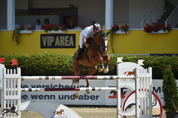 Josef Schwarz jun. und Pokerface holen mit Rang drei das beste österreichische Ergebnis © sIBIL sLEJKO