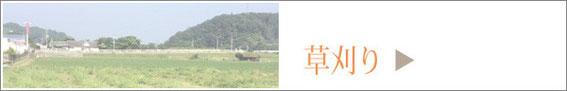 草刈りフォトギャラリー