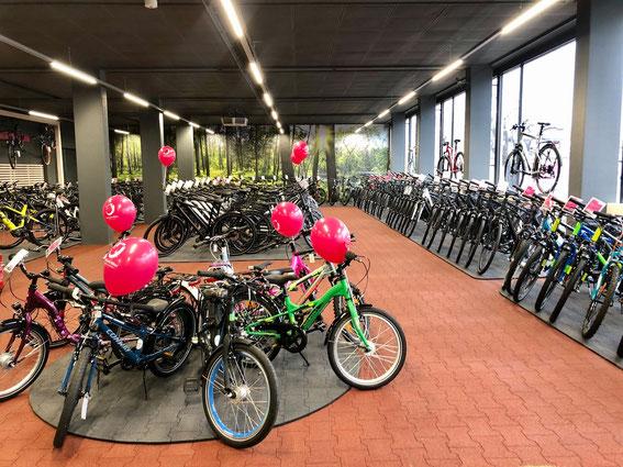 Leuchten für Verkaufsräume von Moelle: Referenz 'Little John Bikes'