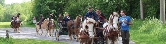 Sortie découverte en attelage ou à cheval le samedi et dimanche sur réservation