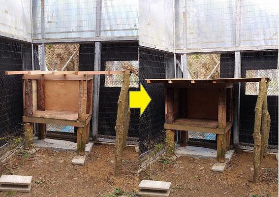 寝小屋の場所は大きく変更し、雨の日でも安心して寝られるように大きい屋根に張替え。