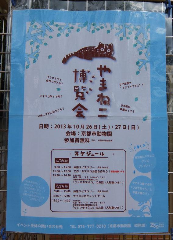 「やまねこ博覧会」ポスター:京都市動物園作成