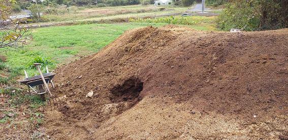 ↑熟成した堆肥の山。牛糞ともみ殻、ワラを混ぜて作られています。中には無数のクワガタの幼虫とミミズが!!