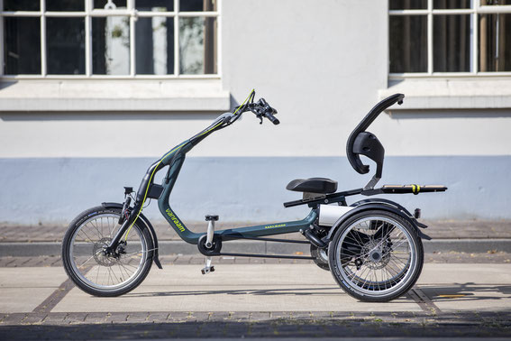 Easy Rider Van Raam mit Elektrounterstützung