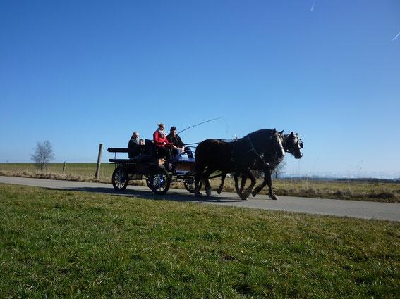 Franzi, Jorett und Franzi als Kutschfahrerin