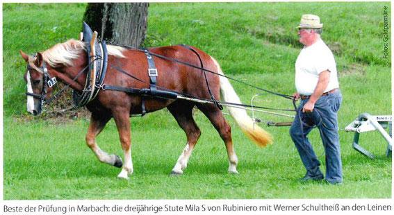 "Presseauszug aus ""Schwarzwälder Spezial 3/17"""