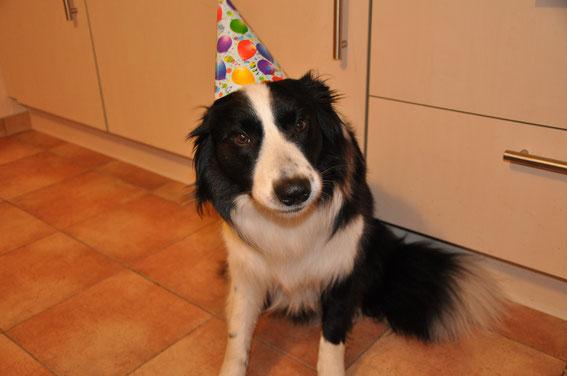 Marley`s private Geburtstagsfeier!