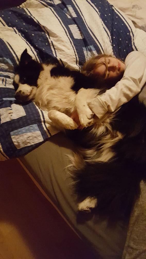Gute Nacht, Freunde!