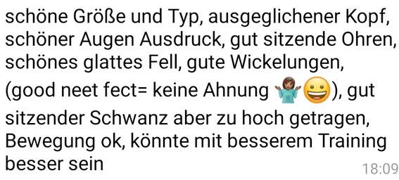 Und hier die Übersetzung ins deutsche.