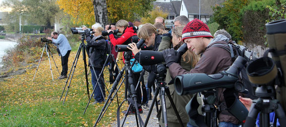 Impressionen der Exkursion an die Seetaucherstrecke, 05.11.2011 (Foto: S. Trösch)