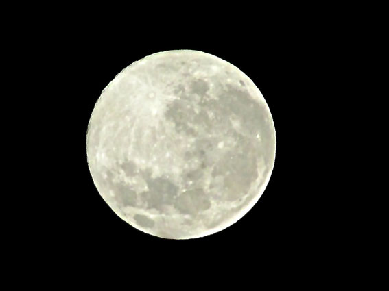 Super Moon (2014.7.13.  3:48am)